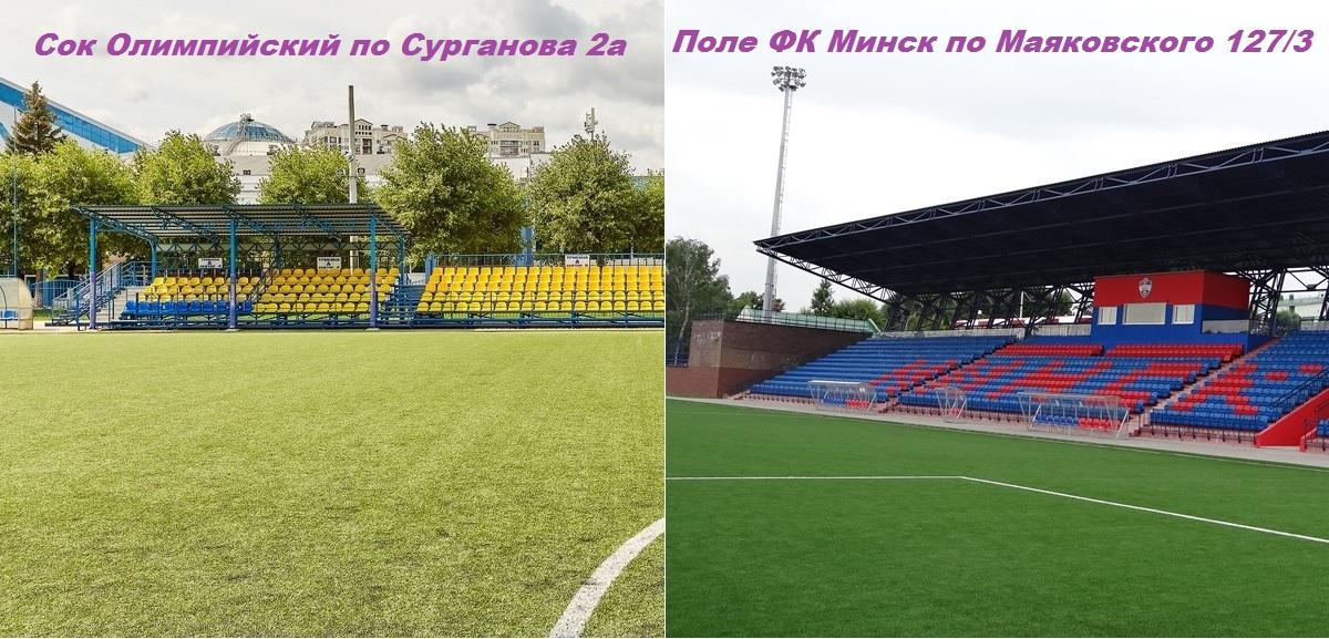 Стадионы, планируемые для организации турниров