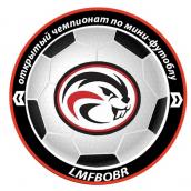 Открытый чемпионат г.Бобруйска по мини-футболу