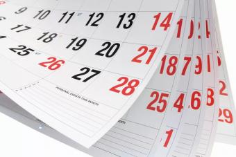 Расписание ДФПЛ - зал на 24.02.19