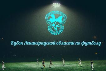 Финал Кубка Ленинградской области