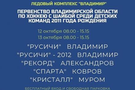 Первенство Владимирской Области среди детских команд 2011 г.р.
