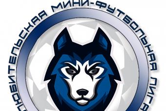 Cостоялось собрание представителей команд-участниц Любительской Мини-Футбольной Лиги - МосФутзал.