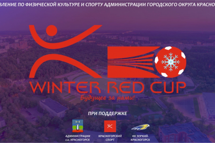 Winter Red Cup