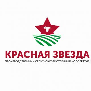 «ПСК Красная Звезда-Ключищи»
