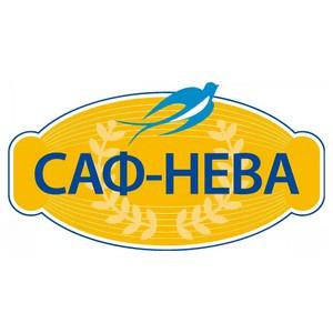 САФ-НЕВА