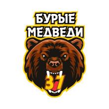 Бурые медведи 37