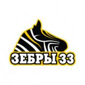 Зебры Школа № 33