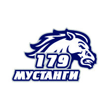 Мустанги 132