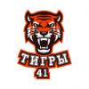 Тигры Школа № 41