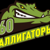 Аллигаторы 60