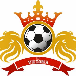 ФК Виктория 2008-2009