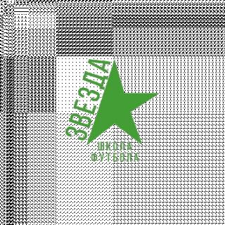 Звезда 07-08