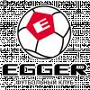 Эггер (Шуя)