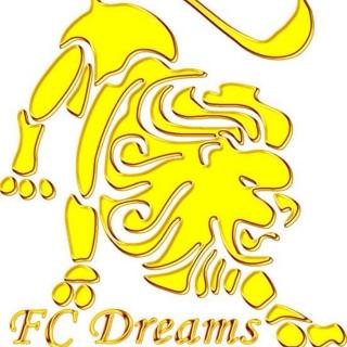 FC Dreams (Круглянский р-н)