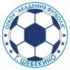 ФК ОГАОУ Академия футбола Г.Щебекино