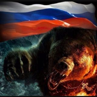 Медведи СВ