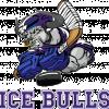 ХК Ice Bulls В