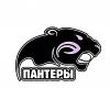 Пантеры (Санкт-Петербург)