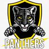 Пантеры (Казань)