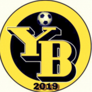 Young Boys 2019
