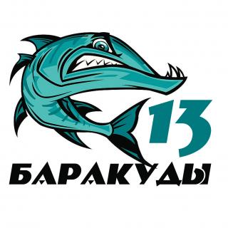 Барракуды 13