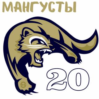 Мангусты 20