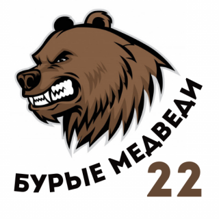 Бурые медведи 22