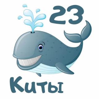 Киты 23