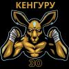 Кенгуру 30