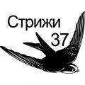 Стрижи 37