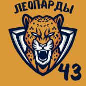 Леопарды 43