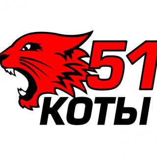 Коты 51