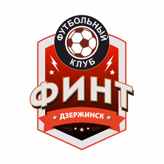 ФИНТ Дзержинск