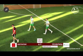 МагнаПак – ПрофитМед - 6-1