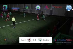 Школьная Футбольная Лига. Обзор матча:   Быки 33 - Дельфины 84